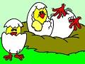 Цыпленки