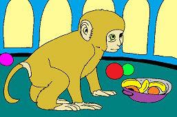 Браун обезьяна
