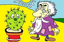 Старик и кактус