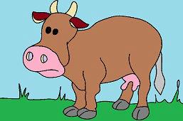 Домашняя корова