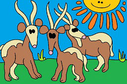 Антилопы Канна