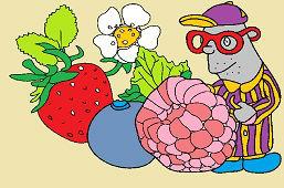 Плоды сада