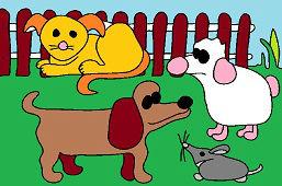 Животные во дворе