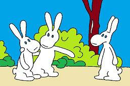 Кролики на дороге