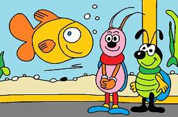Жуки и аквариум