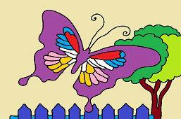 Экзотическая бабочка