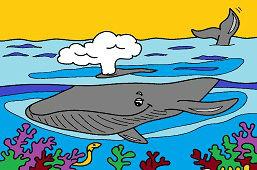 Кита в океане