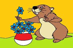 Бобр и ароматные цветы