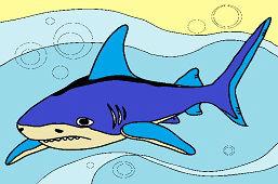 Опасная акула