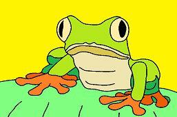 Лягушка с большими глазами