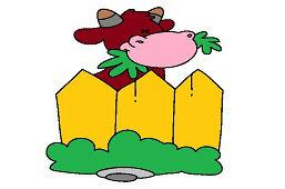 Корова за забором