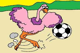 Страус и футбол