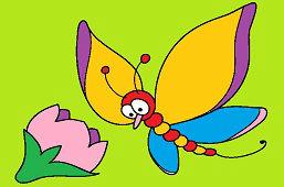 Бабочка Марсель