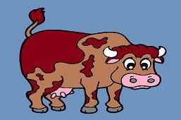 Pыжеволосая корова