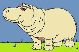 Африканский бегемот