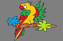 Ара попугай