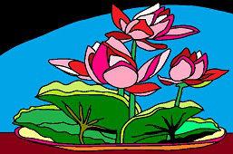 Цветы в миску
