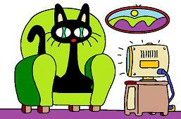 Кот перед телевизором