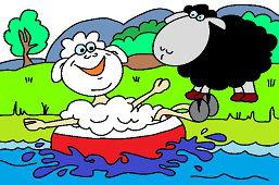 Овцы на озере