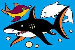 Oкеанические рыбы