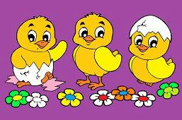 Три цыпленка