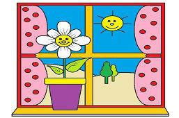 Окно в моей комнате
