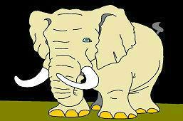 Слон непальский